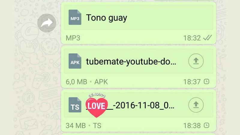 whatsapp file share