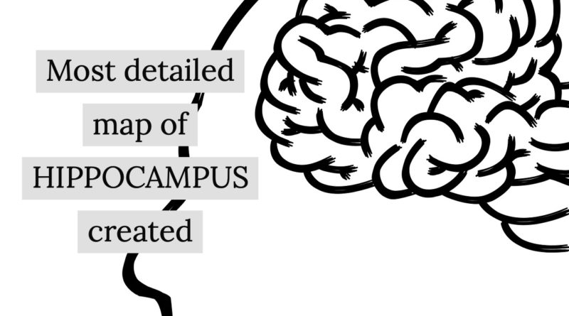 most detailed map of hippocampus