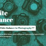 what is white balance in photography