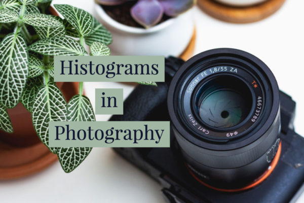 histograms in photography